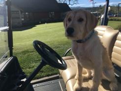 Putter Golf Cart.jpg